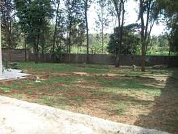 Executive 4 bedroom with 2 Dsq to let at Garden Estate on 1/2 acre.