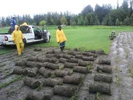 Grass sales & Deliveries. We lay, Supply Topsoil, Compost