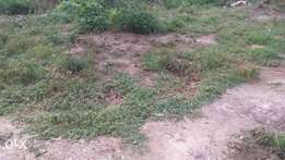 Full Plot Of Land For Sale at Nkoransa
