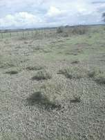 50, 80 and 104 acres for sale in kinangop ksh 1.2m per acre.