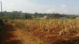 Land for sale in Gikambura Kikuyu Kiambu 50×100