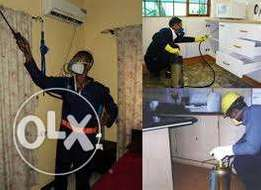 Coperate and Professional Cleaners and Fumigation Service