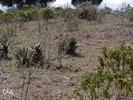 11 acres 2 kilometres from giraffe arc hotel Nyeri County