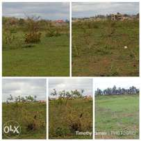 40*80 plot for sale at Tola estate near urithi estate and Midas Int SC