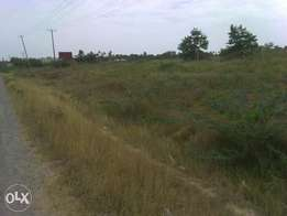 land 11 acres 1st row mnagoni near mariakani