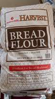 flour for bakers