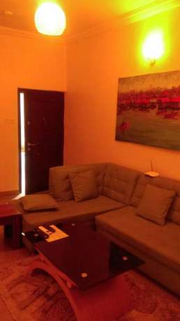 An Elegantly Furnished 2 Bed Flat with Topnotch Facilities in Agungi Lekki - image 7