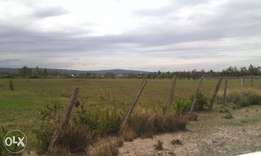 2 (1/2)acres near sportman arms hotel at 10.5m & 12.5m