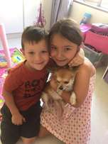 House, Pet, Baby Sitters, Au Pairs, Tutors, Care Givers and Maids