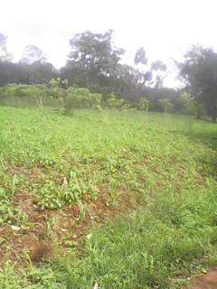 Sale of aquarter piece of land at MUGOYA 200m from the station Embu Town - image 1