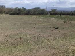 Plots for sale at mitimingi with clean tittles