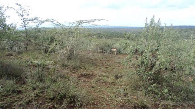 22 Acre land for sale in Kiloret along Ngong Najile road Saikeri - image 3