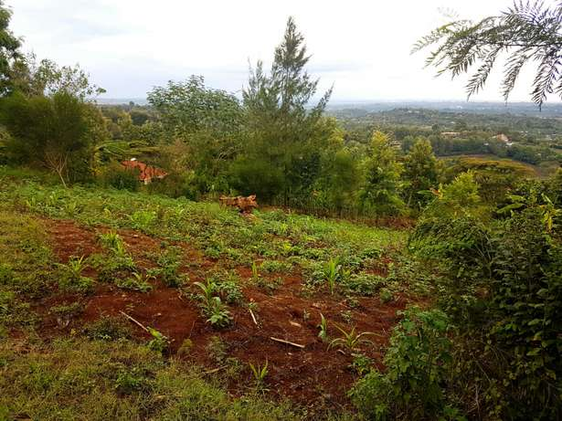 Red soil - 50 by 100 acre plot of Land in Upper Matasia Ngong Township - image 5