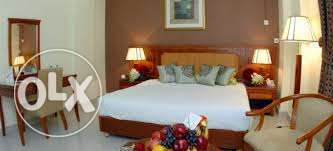 daily rent fully furnished rooms in the hotel المنصورة -  2