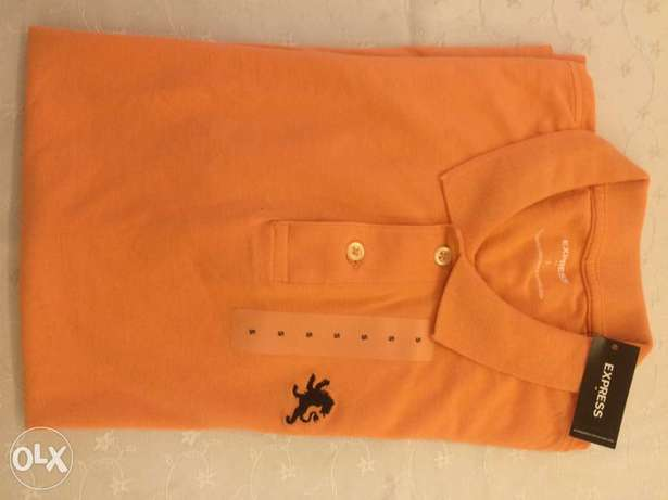 EXPRESS polo shirt from usa