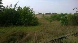 Over 100 Plots of Land