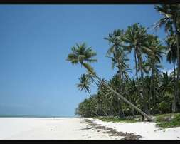 Very Prime Land for sale in Diani -Mombasa