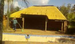 Thatch roofs brushing