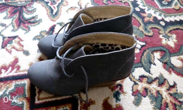 Grey Wedges Mountain View - image 2