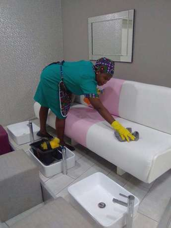 Pest Services and Cleaning Johannesburg - image 3
