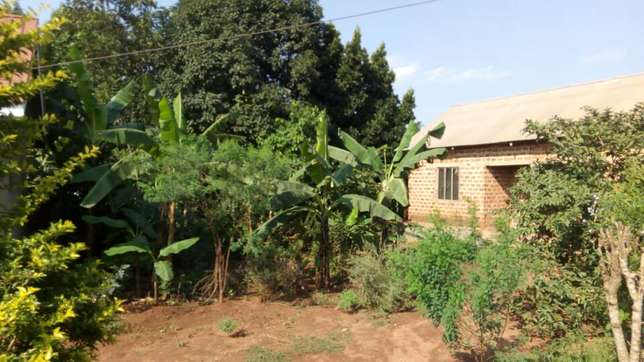 Seated on 120ft by 60ft house with empty land on sale in Gayaza at 58m Wakiso - image 1