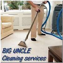 Steam carpet and upholstery cleaning