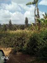 3 acres for sale in kiambaa ndenderu 1km from tarmac 20m per acre