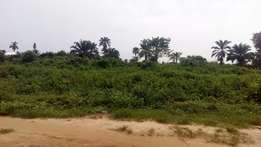 1000 plots of land with deed of conveyance 4 sale within Igwuruta PH