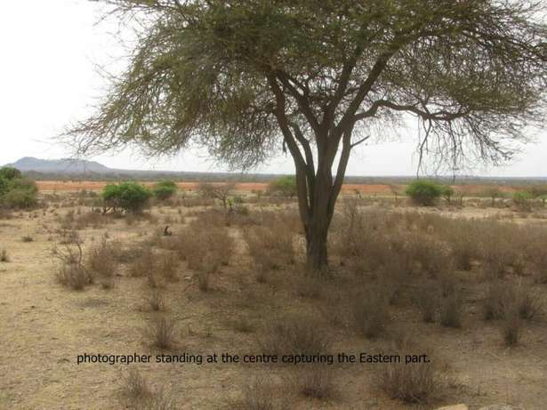 A 50 acres Island on Lake Jipe on sale Mwangea - image 3