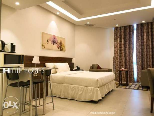 Furnished studio available,Hilitehomes