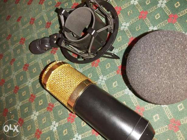 BM-800 With pop filter and shock mount and cable
