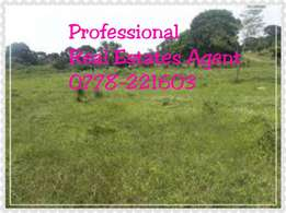 0.30 Hectares of Land For Sale On Gaba Road