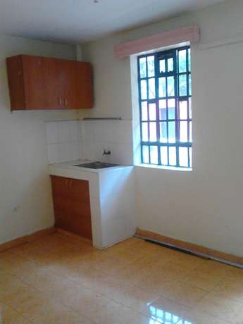 One bedroom with un open kitchen Ruaka - image 2