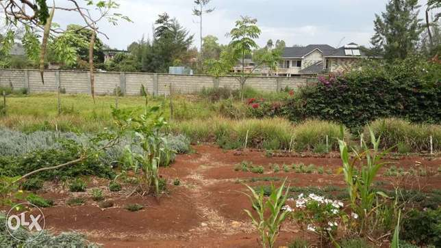 Prime 1/2 Acre in Garden Estate (Gated community with gorgeous homes) Ridgeways - image 3