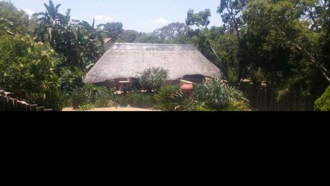 Room available for rent in menlyn Newlands Rietvalleirand - image 3