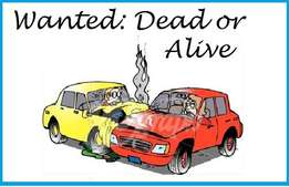 WANTED: Dead or alive cars wanted for Cash!!
