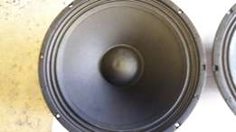 2 x 15 inch fane Sovereign R1000