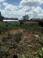 1/4 an acre plot for sale in Syokimau