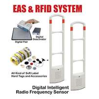 Anti Theft EAS System