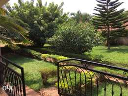 a two bedroom house for rent in bukoto