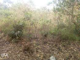 150ft by 300ft For Sale in Ughelli, Delta State.