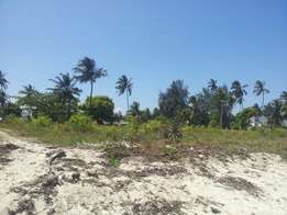 1 acre White Sand Beach Plot in Kikambala near Royal Resort