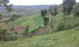 ololulunga in narok has 5000 acre of hilly land for lease with streams