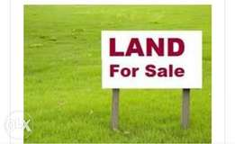 2 plots Land for sale