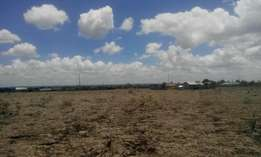 An ideal 1/4 acre land in Ongata Rongai.