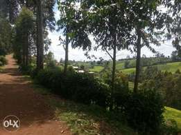 Prime land for sale!quick End mnth offer