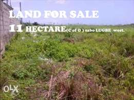 11 Hectare of Land for Sale Abuja