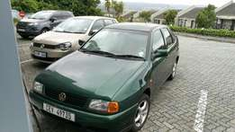 Polo clasic for sale