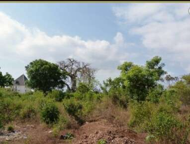 Very Prime Land for sale in Diani -Mombasa Hurlingham - image 3