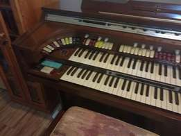 Organ - THOMAS with synthesizer